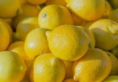 Citrons Stock Photo