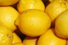 Citrons Photographie stock