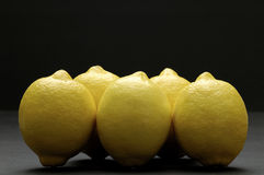 Citrons Photo stock