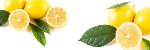 Citrons avec des feuilles sur un fond blanc Citrons frais sur un petit morceau Photographie stock libre de droits