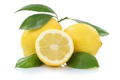 Citrons de citron avec des fruits de feuilles d'isolement sur le blanc photographie stock libre de droits