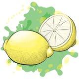 Citrons de style d'encre et d'aquarelle illustration stock