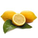 Citrons et blanc Photo libre de droits