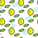 Citrons et feuilles simples sur le blanc, vecteur Image libre de droits