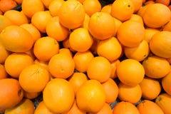 Citrons et limette Photos stock