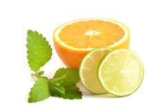 Citrons et limette Photos libres de droits