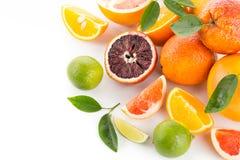 Citrons et limette Images libres de droits