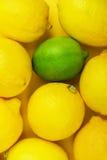 Citrons et limette photo stock