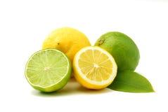Citrons et limettes vertes Image stock