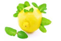 Citrons et menthe. Images libres de droits