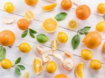Citrons et oranges mûrs Image libre de droits