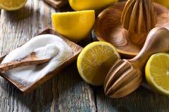 Citrons et presse-fruits photographie stock libre de droits