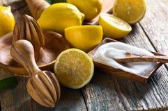 Citrons et presse-fruits photographie stock