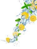 Citrons frais avec l'éclaboussure de l'eau sur le blanc image libre de droits