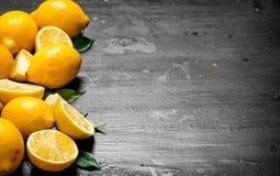 Citrons frais avec les lames vertes Photo libre de droits