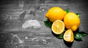 Citrons frais avec les lames vertes Photographie stock