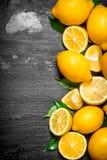 Citrons frais avec les lames vertes Photos libres de droits