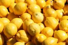 Citrons frais extérieurs Photographie stock libre de droits