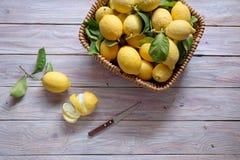 Citrons frais, mûrs, rassemblés photos stock