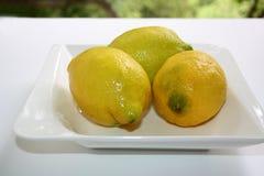 Citrons frais sélectionnés photographie stock libre de droits