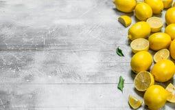 Citrons jaunes juteux avec des feuilles images libres de droits