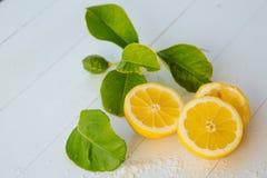Citrons juteux avec des feuilles sur un fond en bois blanc Citron frais Fond frais d'agrumes photos libres de droits