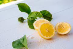 Citrons juteux avec des feuilles sur un fond en bois blanc Citron frais Fond frais d'agrumes photo stock