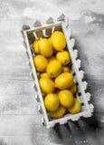 Citrons juteux dans la boîte images stock