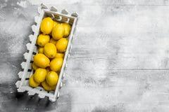 Citrons juteux dans la boîte image libre de droits