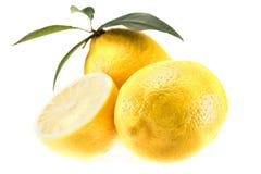 Citrons juteux jaunes photo stock