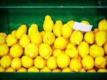 Citrons - lemons Stock Images
