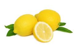 Citrons mûrs avec des feuilles () Images stock