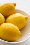 Citrons normaux Image libre de droits