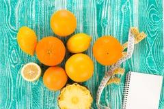 Citrons, oranges et limettes Images stock