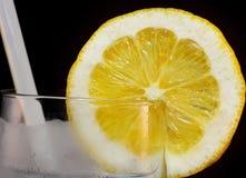 Citronskiva i exponeringsglas Royaltyfri Foto