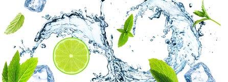 Citronskiva, vattenfärgstänk och mintkaramellsidor fotografering för bildbyråer