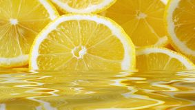 citronskivor vektor illustrationer