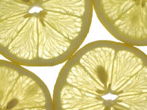 citronskivor Fotografering för Bildbyråer