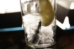 Citronsodavatten i exponeringsglaset med is arkivfoton