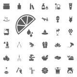 Citronsymbol Spa och för rekreation fastställda symboler Uppsättning av 33 brunnsortsymboler Arkivbild