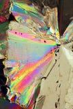 Citronsyra Arkivfoto