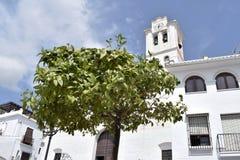 Citronträd framme av den San Antonio kyrkan i Frigiliana - spansk vit by Andalusia Royaltyfri Fotografi