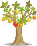 Citronträd med buskig frukt också vektor för coreldrawillustration Fotografering för Bildbyråer