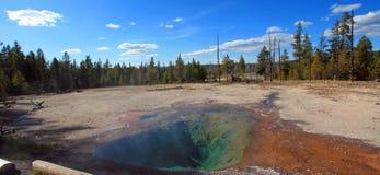Citronvår på Firehole sjödrev i den Yellowstone nationalparken i Wyoming USA Royaltyfri Fotografi