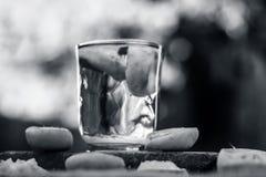 Citronvatten/lemonad med skivor av citroner/citrus Ã- limon Arkivbild