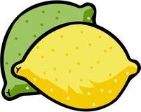 citronvektor Arkivbild