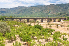 Citrous garden and bridge in dry riverbed Royalty Free Stock Image