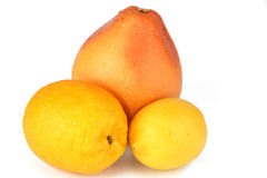 Citrus. It is photographed on a white background Royalty Free Stock Images