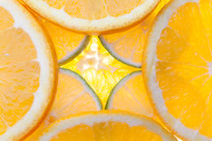 Citrus. Backlit limes and oranges, to be used as a background Royalty Free Stock Photography