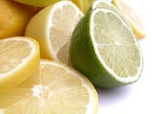 citrus royaltyfri foto
